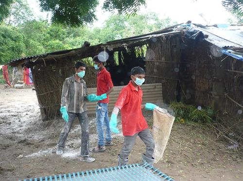 Sanitation Cleanliness drive in flood affected area
