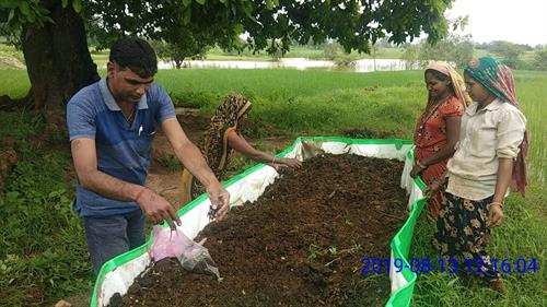 Earthworms being added to Vermi-compost Bed.