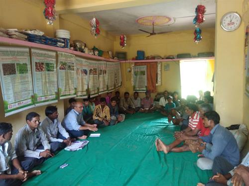 Sustainable Agriculture Training at Ekalbara